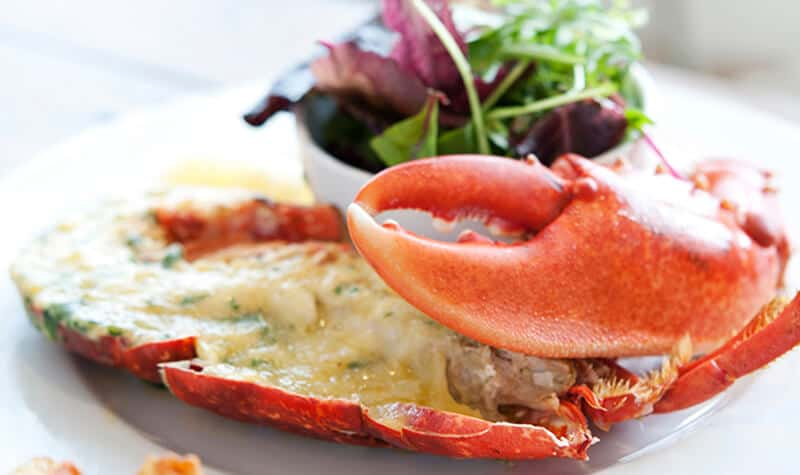 Top 5 Reasons Why Eating Crab is Good for You | Crab