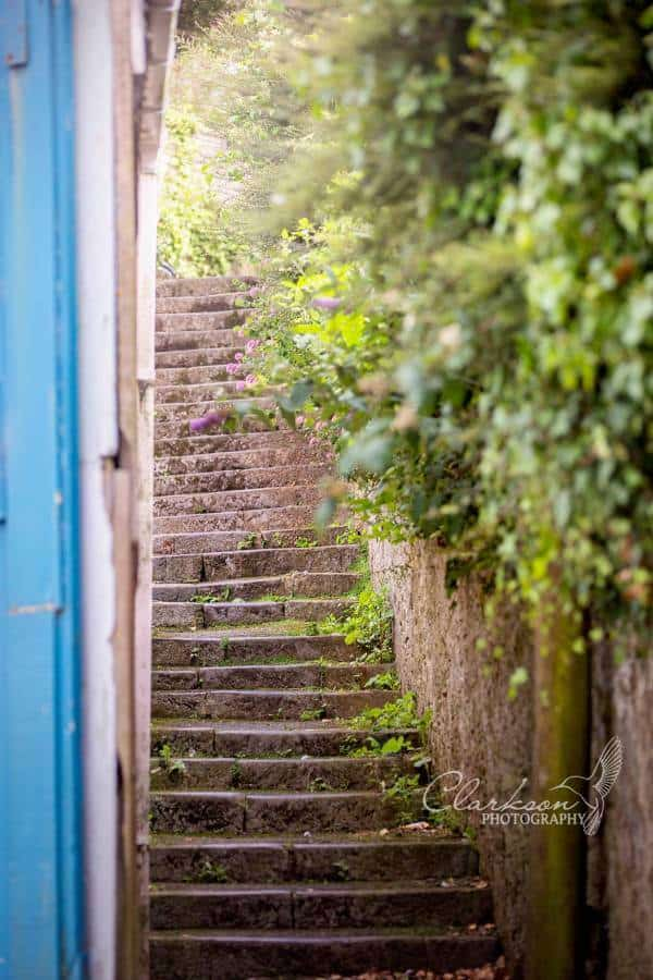 steps salcombe