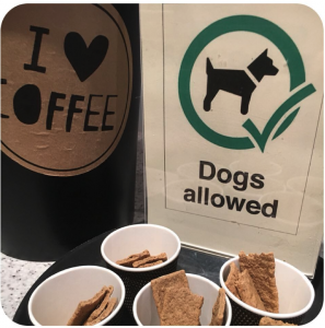 dog-friendly Salcombe coffee shops